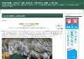 大歩危峡(徳島県)の風景