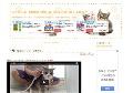 ネコまにあ 猫動画や癒し猫萌える猫